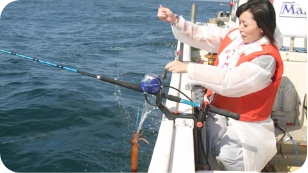 遊漁船でイカ釣り体験